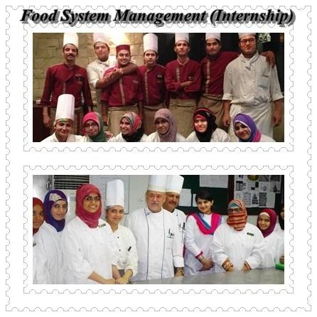 Food System Management